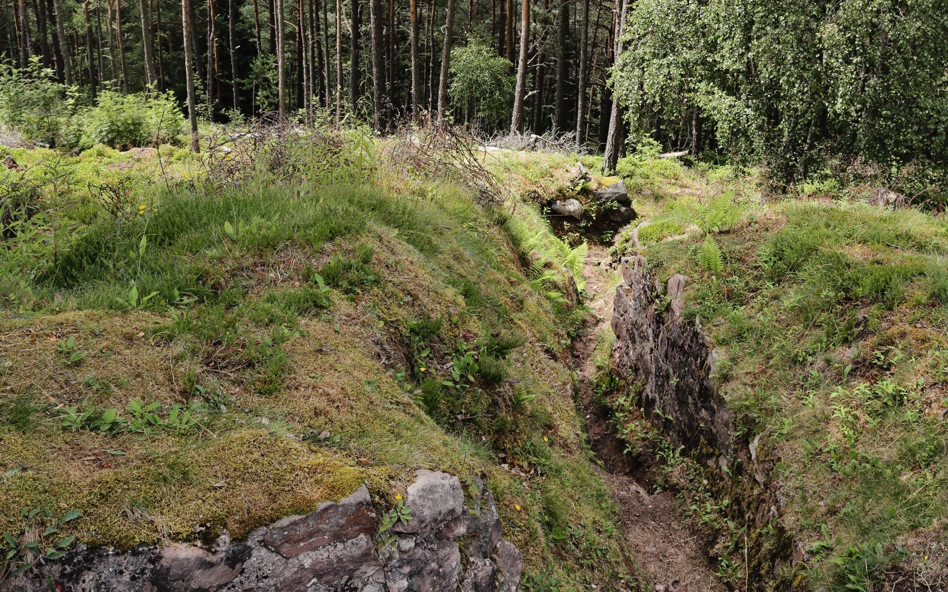 Entrenchment from Le Linge Battlefield during WWI